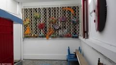 la Maison de l'Art 19