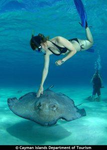 Îles Caïmans - Plongée
