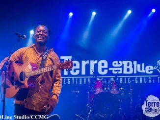 festival-terre-de-blues-13