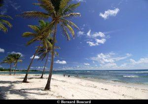 Guadeloupe 18