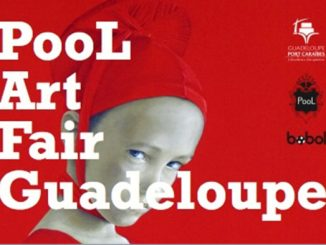 pool_art_fair_guadeloupe_2015_b