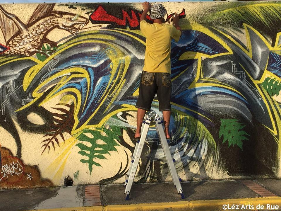 Festival Graffiti & Street Art Gpe 2017 - 10 E