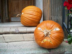 pumpkin-2197329_960_720