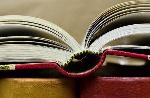 book-2909331_960_720