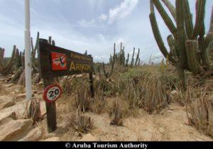 Aruba 10