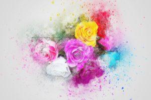 flowers-2737269_960_720