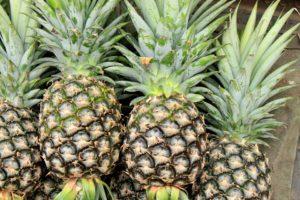 pineapple-2901430_960_720