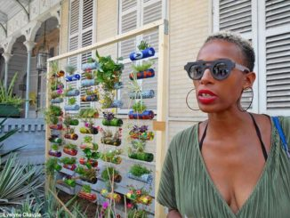 """La designer guadeloupéenne, Myriam Maxo, qui a travaillé sur le projet """"The Caribbean Green Wall""""."""