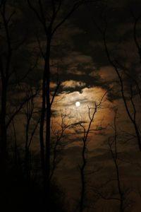 full-moon-1372783_960_720