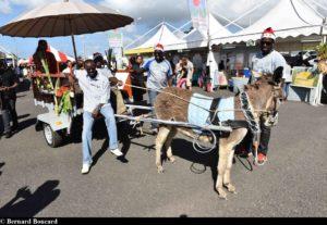 Jou a Tradisyon - Guadeloupe_1