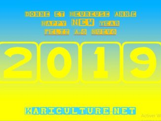 Kariculture.net 2019-0
