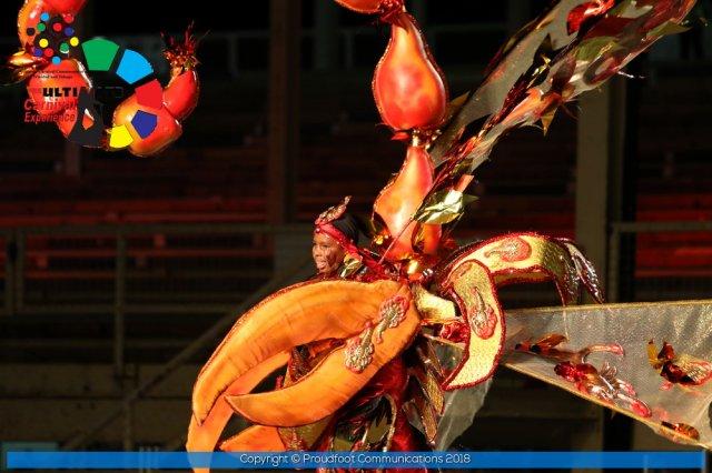 Carnival of Trinidad & Tobago 29D