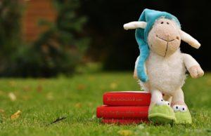 sheep-1596376_960_720