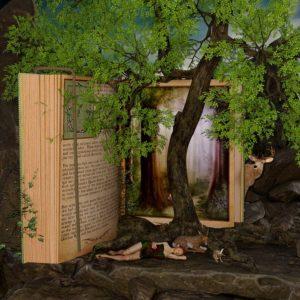 book-2134779_960_720