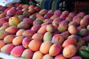mangoes-354062_960_720