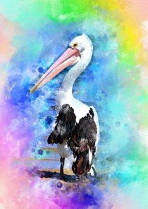 pelican-2882279_960_720
