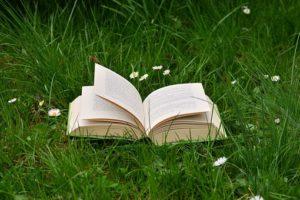 book-2224934__340