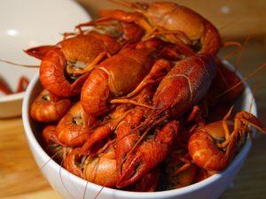 lobster-3453_960_720