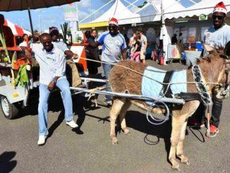 """Ary CHALUS, Président du Conseil Régional de la Guadeloupe, à """"Jou a Tradisyon"""" à Jarry, Baie-Mahault en 2015 (GUADELOUPE)"""