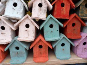 bird-house-72332_960_720