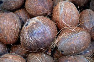 coconut-1583223_960_720