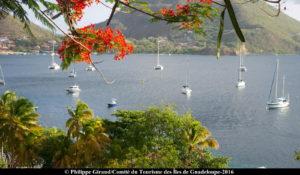 Guadeloupe-20