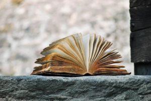 book-2341083_960_720 (1)