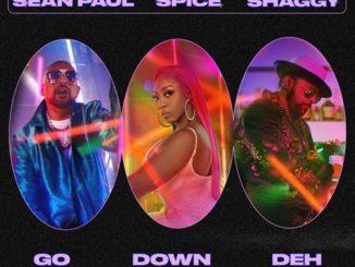 Spice ft. Shaggy and Sean Paul - Go Down Deh 0