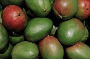 mango-4788942_960_720