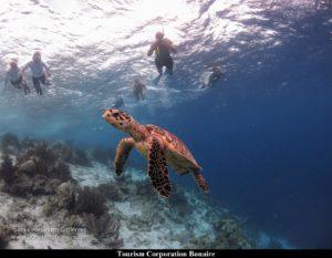 Bonaire g
