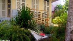 Caribbean Green Wall-Myriam Maxo 5B