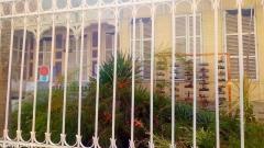 Caribbean Green Wall-Myriam Maxo 6