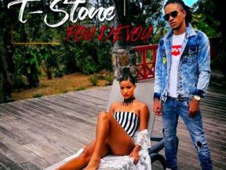 T-Stone 01