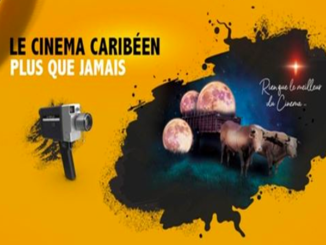 Some 50 films are already available on the platform Cinédiles Caribbean VOD