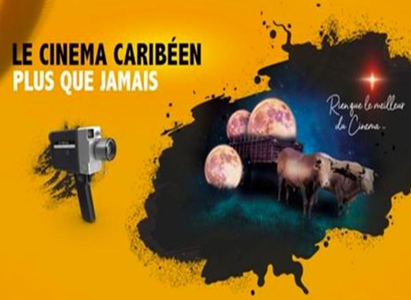 Une cinquantaine de films sont déjà disponibles sur la plateforme Cinédiles Caribbean VOD